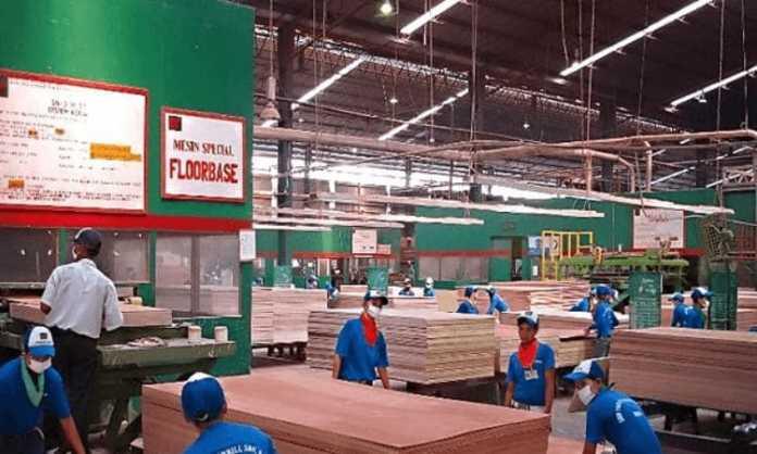 pabrik plywood malaysia