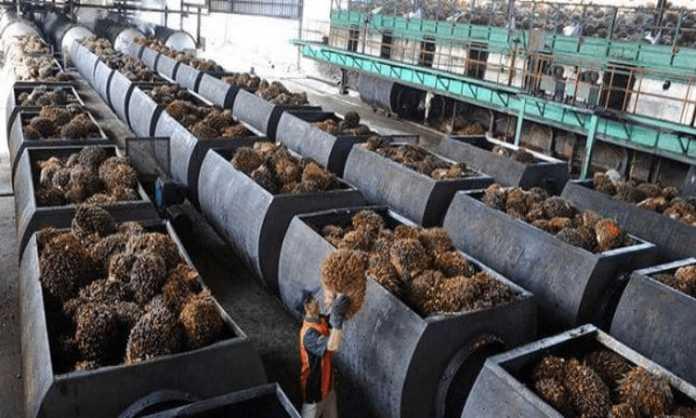 pabrik kelapa sawit malaysia